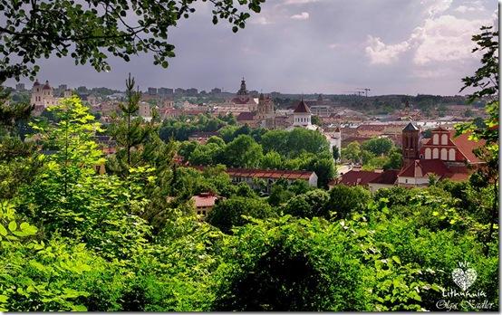Vilnius skendi žalumoje...